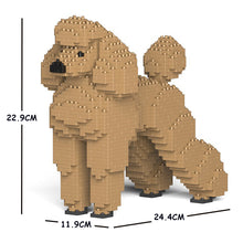Load image into Gallery viewer, Standard Poodle 01S-M02 / 01C-M02