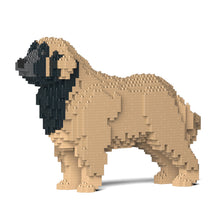 Load image into Gallery viewer, Leonberger 01S-M02 / 01C-M02