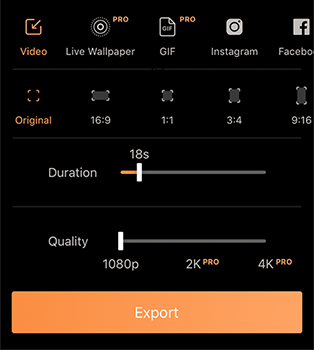 Export options in Pixaloop