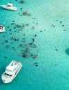 Stingray City - Grand Cayman Island