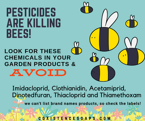 pesticides insecticides bee decline harm