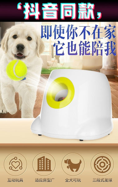 Dog pet toys Tennis Launcher Automatic throwing machine pet Ball throw device Section emission with 3 balls