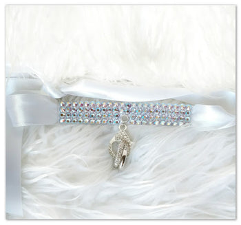 products/dog_ring_bearer_collar.jpg