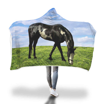 products/flirt_blue_sky_grass_cut_out_on_hood.jpg