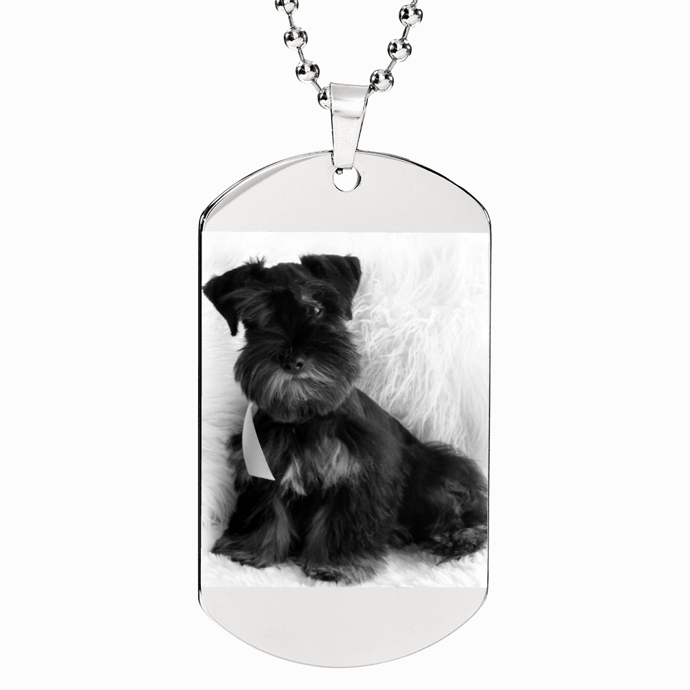 Your Pet's Photo Etched Dog Tags Necklace