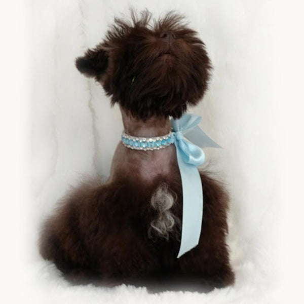 White Tie Dog Ring Bearer Collar