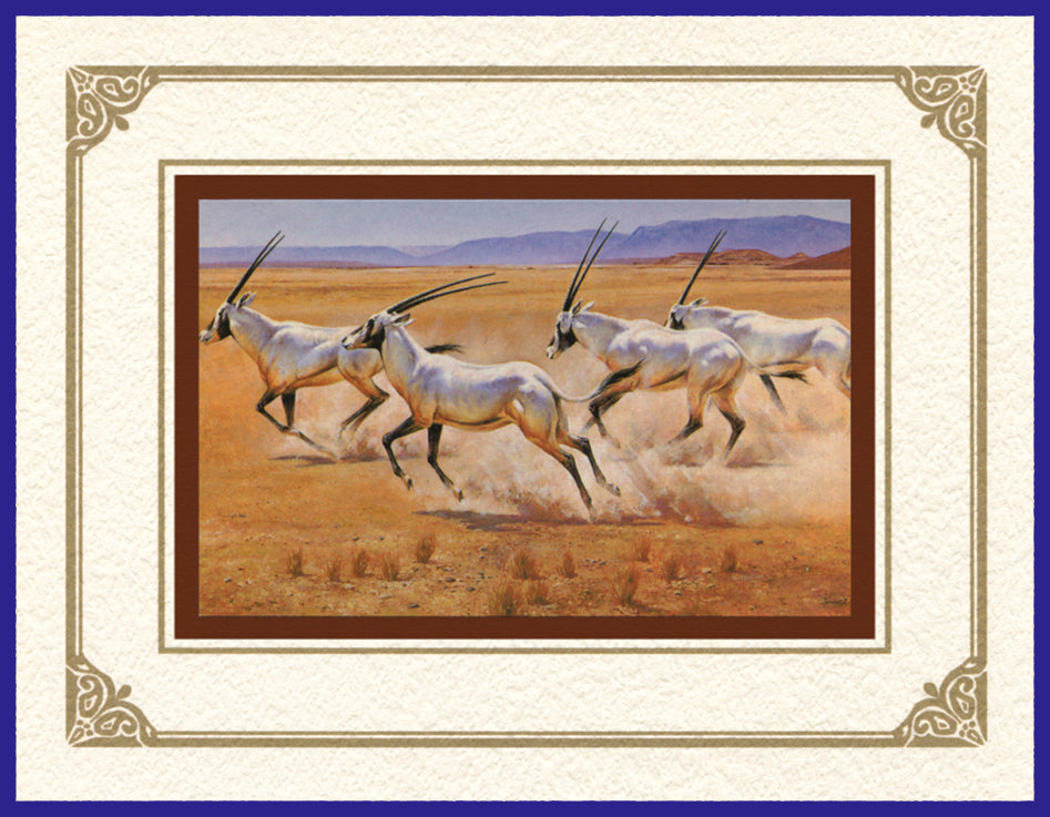 Desert Life Collection of Orientalist Art - DLC 1 On The Move - Arabian Oryx (Pack of 5 cards and envelopes) - manara