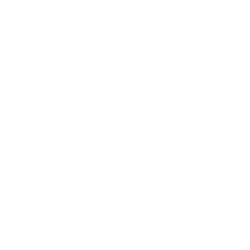 Paleo Certified Beef Jerky | PREVAIL Jerky