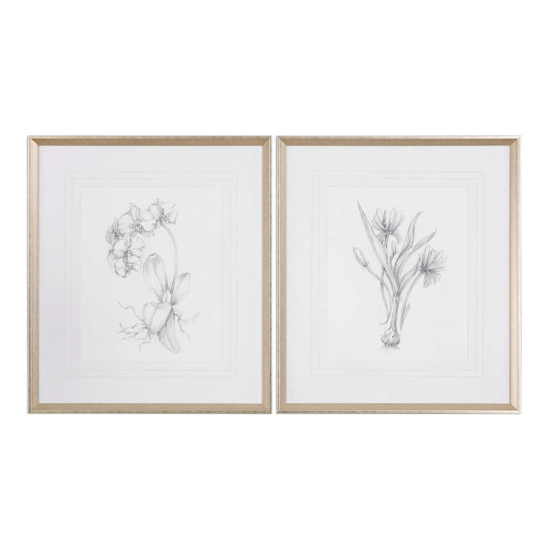 Botanical Sketches Hand Painted Artwork Set of Two