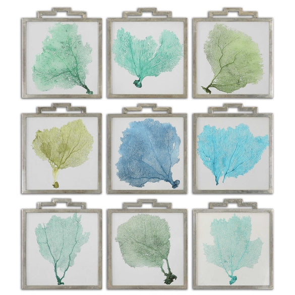 Sea Fans Set of nine