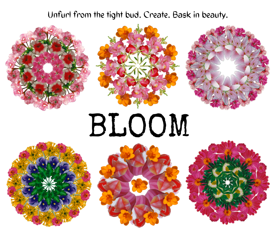 Entire Bloom Collection
