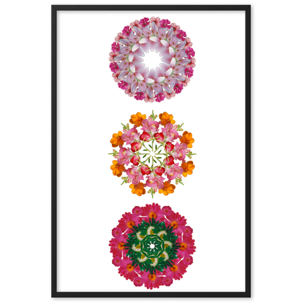 Set of 3 Mandalas from the BLOOM collection framed poster( Set 1 )