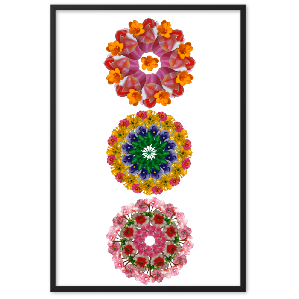 Set of 3 Mandalas from the BLOOM collection framed poster( Set 2 )