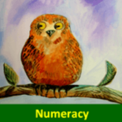 A - Pocket Learner Cards - Numeracy