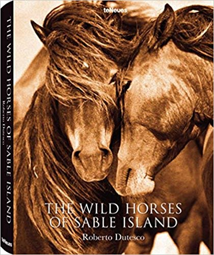 The Wild Horses of Sable Island by Roberto Dutesce