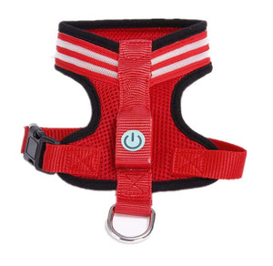Led Dog Harness (USB Rechargeable, Adjustable, Lightweight and Rainproof) - A&M Executive Services LLC