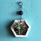 Small Hanging Air Plant Hexagon with Amethyst