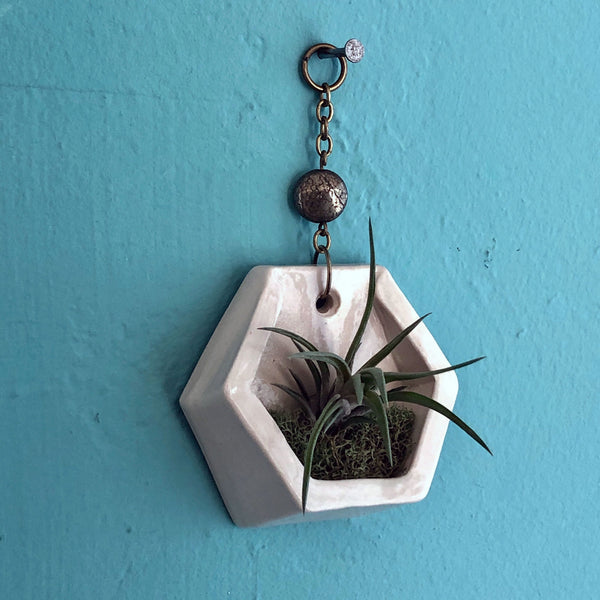 Small Hanging Air Plant Hexagon with Pyrite