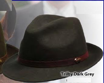 Trilby Wool Felt - leather bands