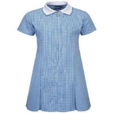 Blue Zip Gingham Dress