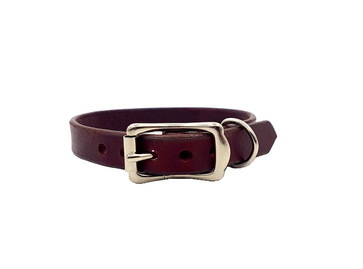 The Signature Collar - Small Dogs