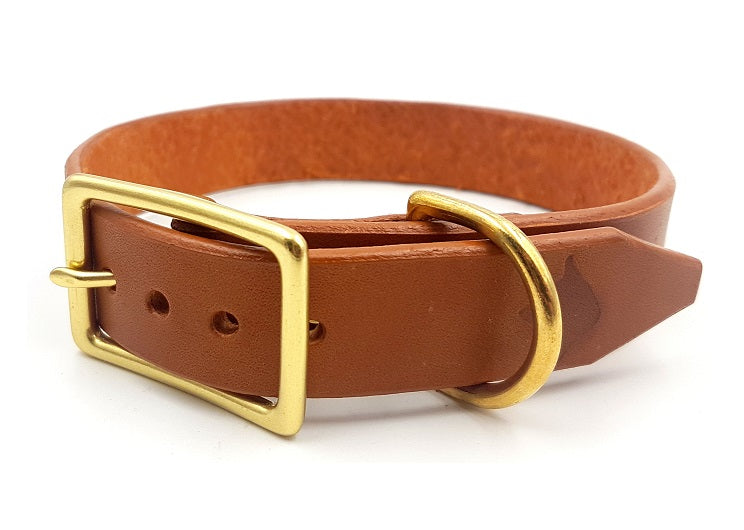 The Signature Collar - Adult Dogs