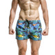 Palm Tree in Blue Swim Trunk