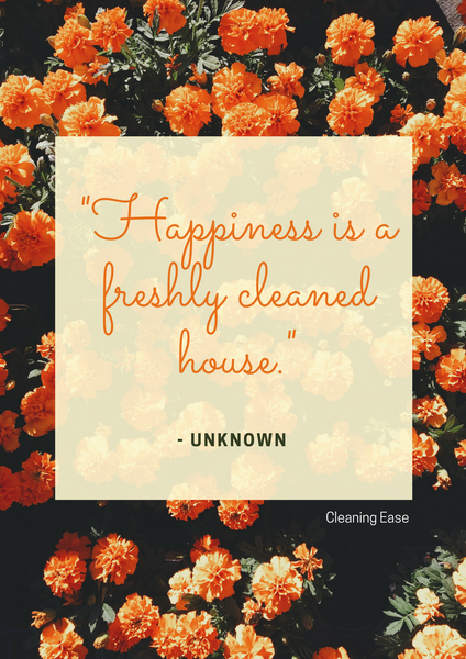 House cleaning quote poster 18