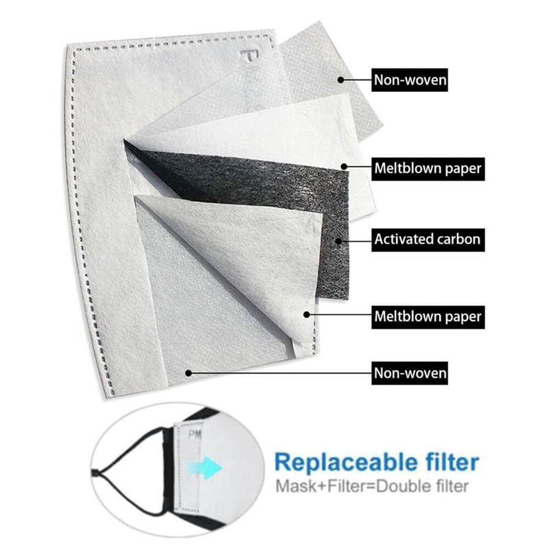 Disposable PM 2.50 Replacement Filters