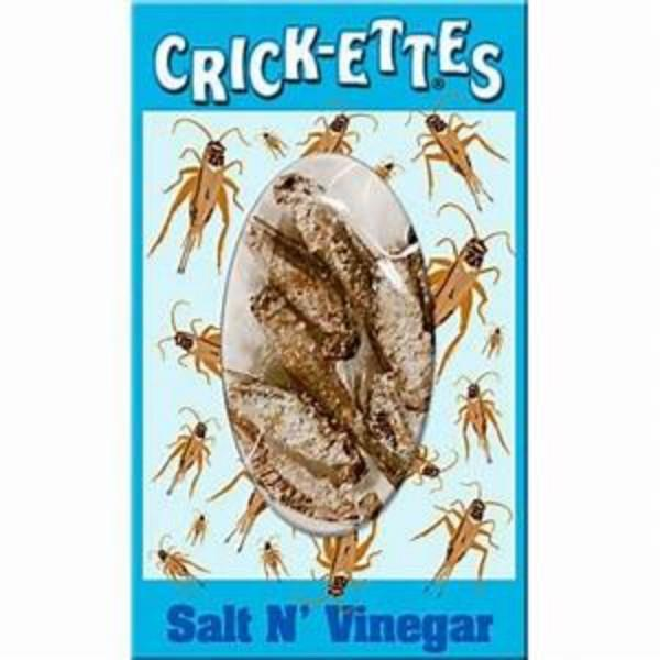 Hotlix Crickets Salt and Vinegar