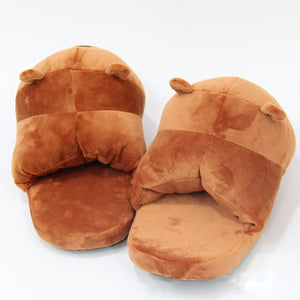 Brown Bear Plus Slippers