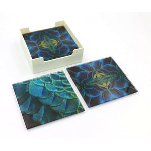 Glass Coasters - Feather Focus