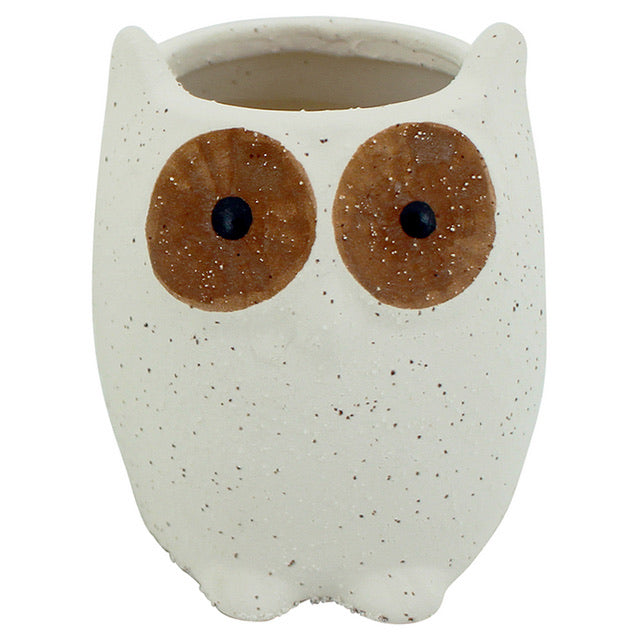 Owl Planter - Small