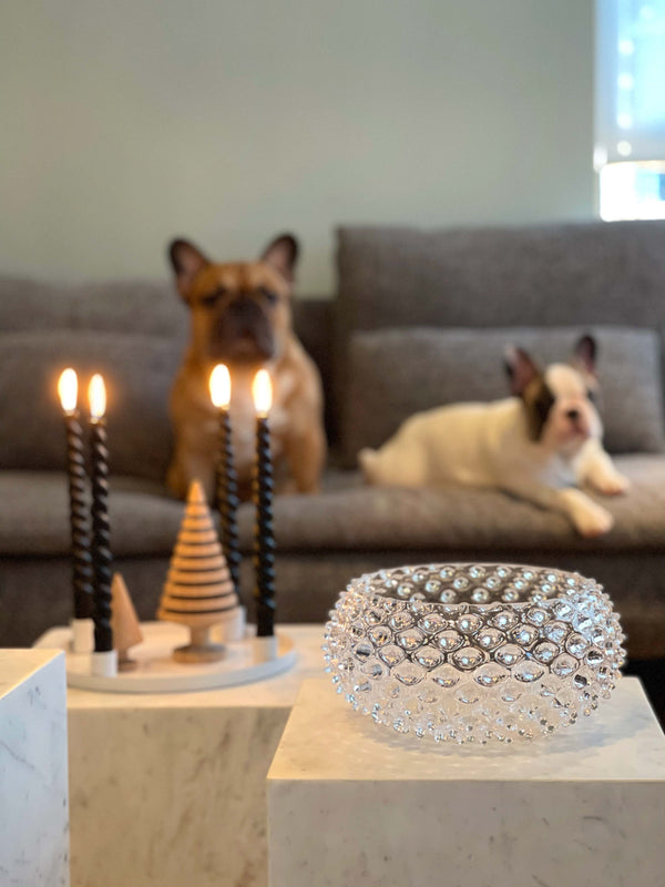 Clear Hobnail Bowl in front of two french bulldogs