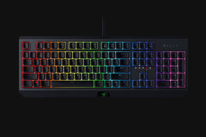 Razer Blackwidow Green Mechanical Keyboard