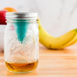 Fruit Fly Funnel for Mason Jars