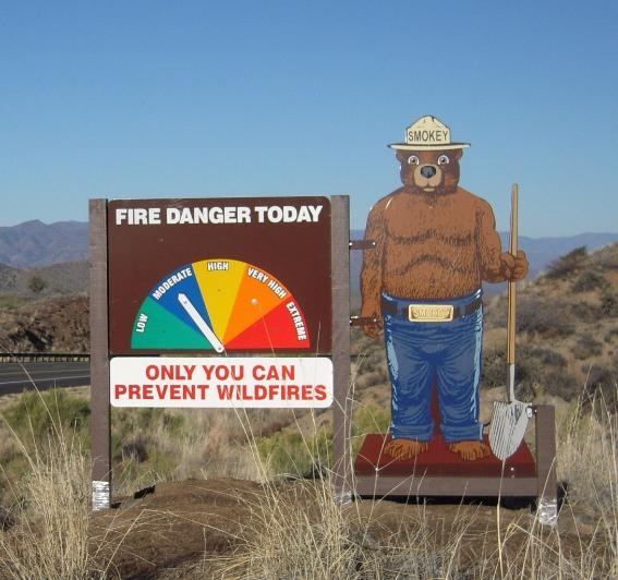 Smokey Zone Two Sided Fire Danger Display With Smokey Bear
