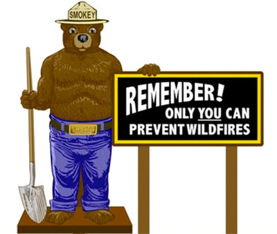 "2D Smokey Bear ""Remember"" Display"