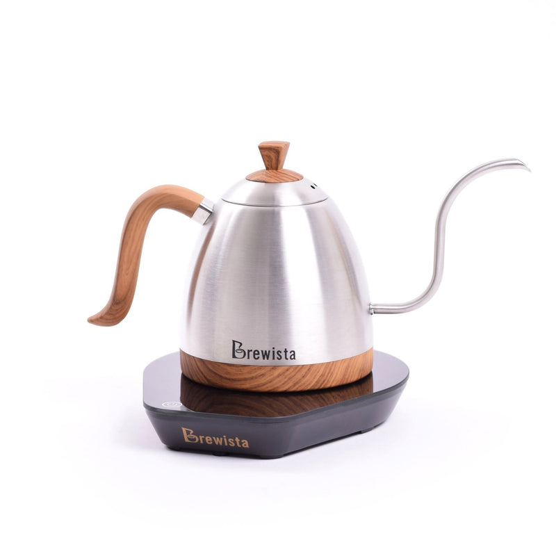 Artisan 600mL Gooseneck Variable Temperature Kettle - Stainless Steel