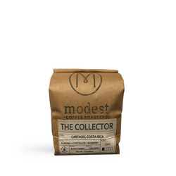 Modest - The Collector