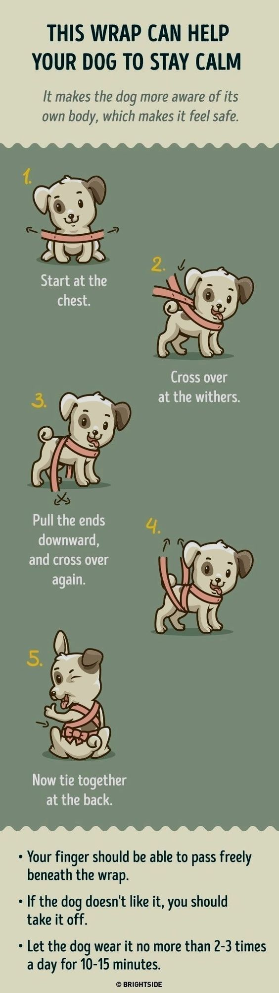 Wrapping trick to keep your dog calm by making him/her feel safe