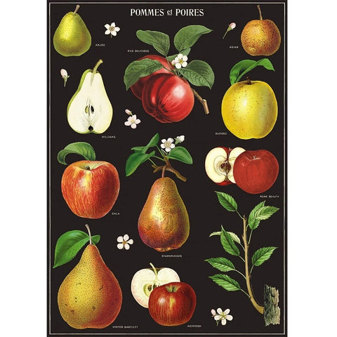 Poster/Wrap - Apples & Pears
