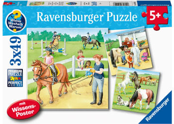 A Day At The Stables 3x49pc Puzzle