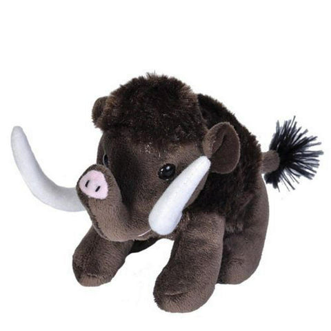 CK Lil's Woolly Mammoth