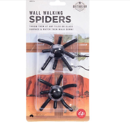Walking Wall Spiders