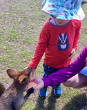 Caperly-Childrens-activities_feeding_kangaroo