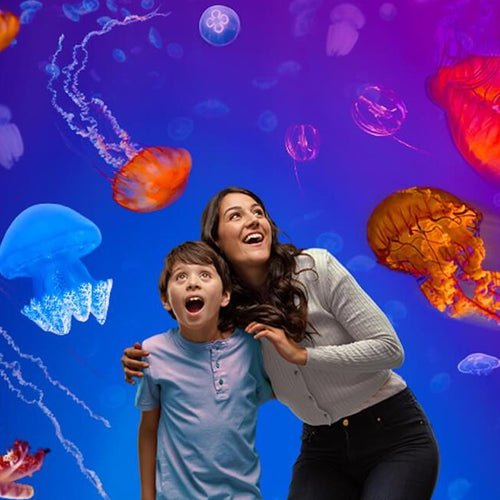 Mother with dark long hair, grey shirt hugging her son with dark short hair, blue shirt. Both have their mouth open in awe of experiencing colourful jellyfish swim around them at Melbourne aquarium.