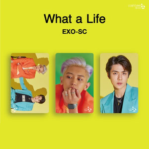 EXO-SC - What a Life Cashbee Card