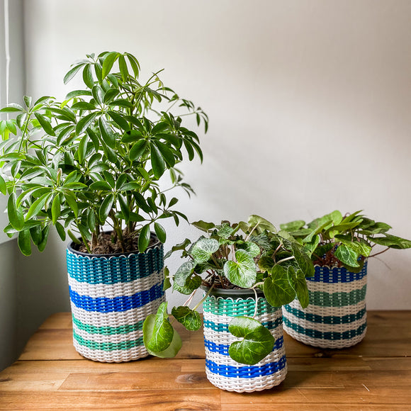 boxi planters ~ stripes