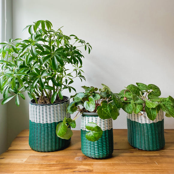 boxi planters ~ two colors